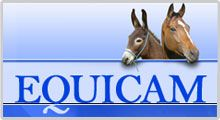 EQUICAM - Sistema de identificación y registro de équidos de Castilla-La Mancha