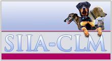 SIACAM - Sistema de identificación de animales de compañía de Castilla-La Mancha